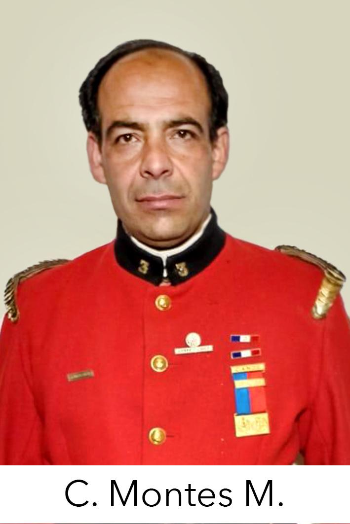 Camilo Montes Maluenda