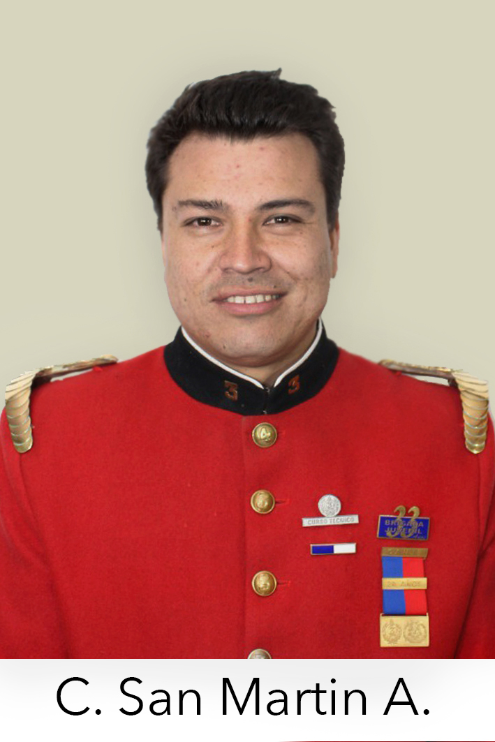 Carlos San Martin Alegria