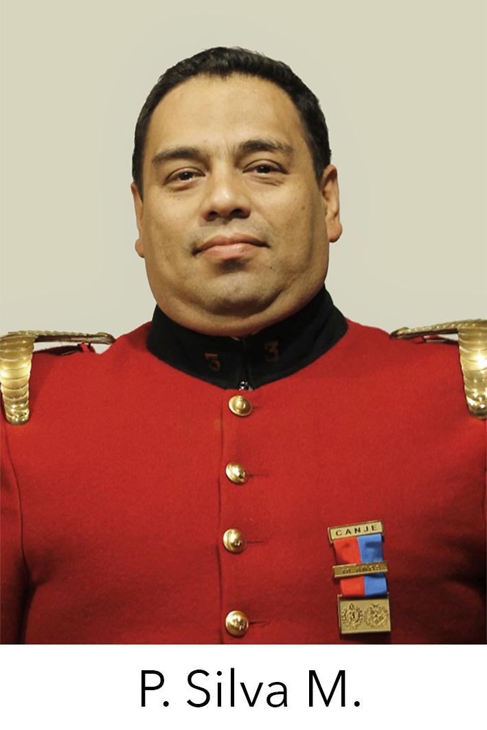 Patricio Silva Meneses